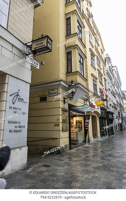 Pedestrian street, Vienna