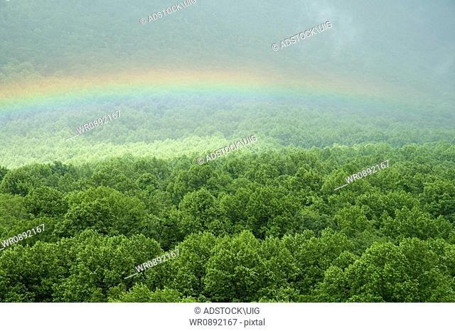 Rainbow, Bullhead Overlook, Great Smoky Mtns Nat. Park, TN