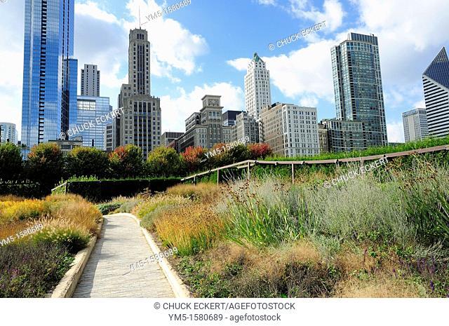 Lurie Garden in Chicago's Millennium Park