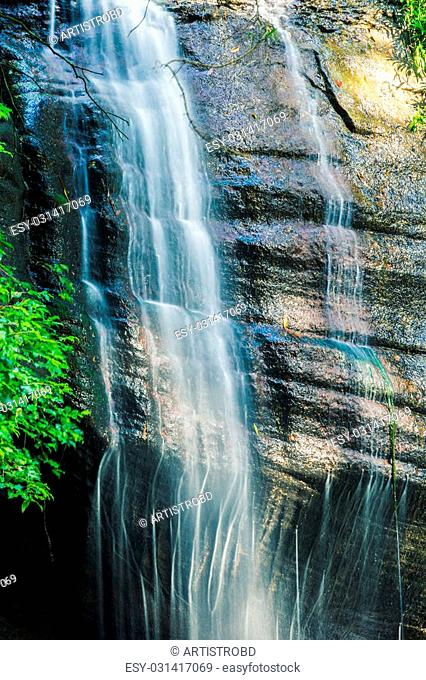Serenity Falls in Buderim, Sunshine Coast, Australia. Located in the Buderim Forest waterfall walk
