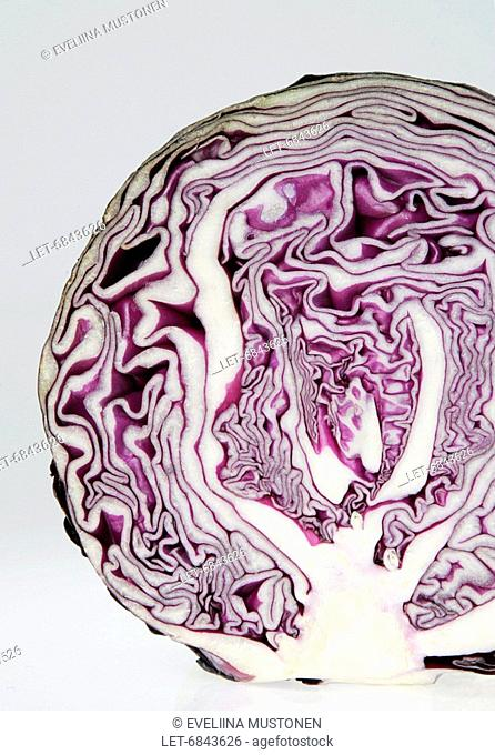 A red cabbage  Helsinki, Finland