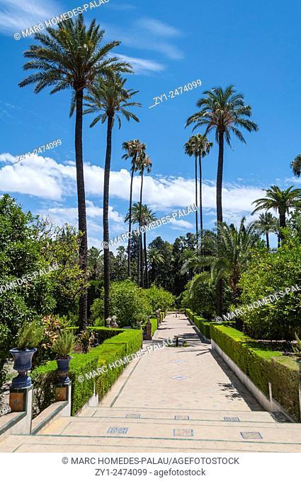 Gardens of the Alcazar palace (Seville)