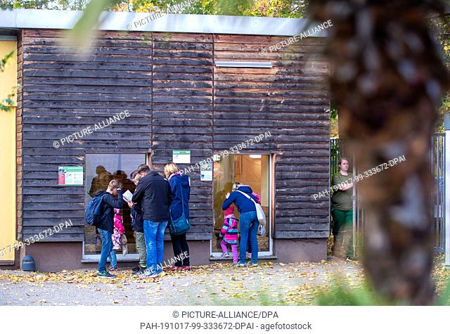 17 October 2019, Saxony, Hoyerswerda: Visitors stand in front of the renovated turtle house in Hoyerswerda Zoo and look through the viewing windows