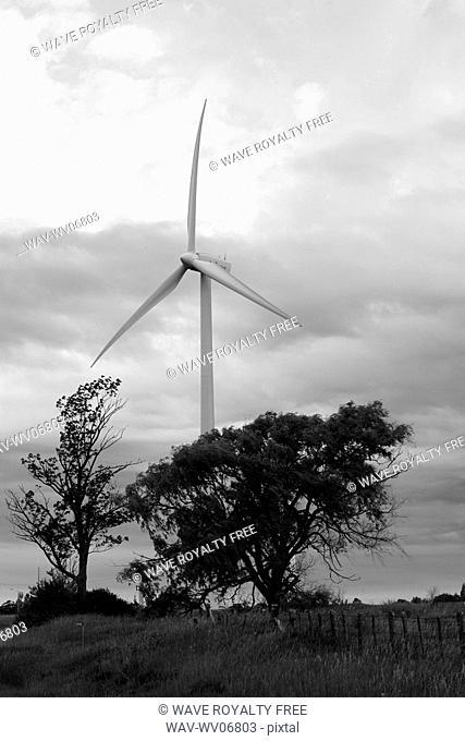 Wind turbine and trees, Tiverton, Bruce Peninsula, Ontario