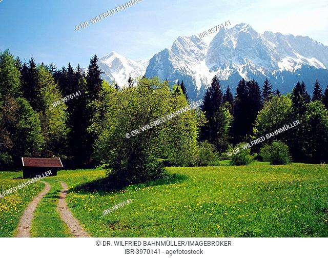 Mountains Alpspitze and Waxenstein ??of the Wetterstein range from the meadows near Grainau, Upper Bavaria, Bavaria, Germany