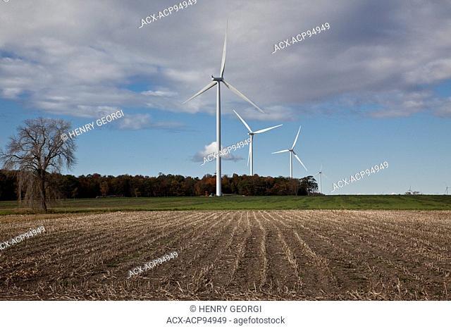 Windmills in farmland of southwestern Ontario (near Lake Erie), Ontario, Canada