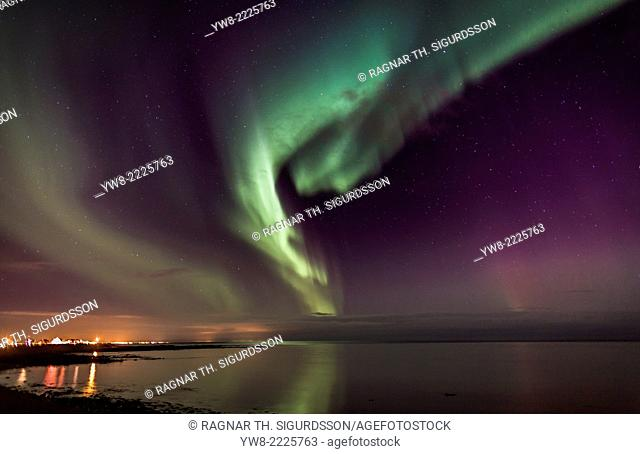 Aurora Borealis or Northern Lights, Alftanes, Iceland