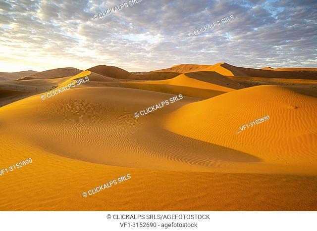 Sossusvlei sand dunes at sunrise,Namib Naukluft national park,Namibia,Africa