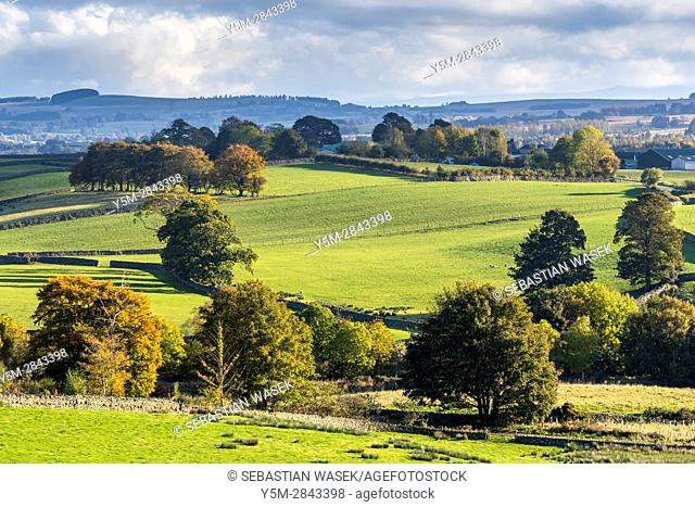 Cumbrian landscape near Keswick, Lake District National Park, Cumbria, England, UK, Europe