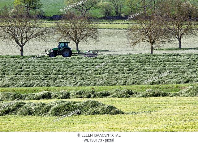 Tractor driving back and forth to harvest a field of hay in spring, Aquitaine region of France