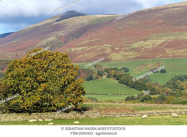 Cumbrian landscape near Threlkeld, Lake District National Park, Cumbria, England, UK, Europe