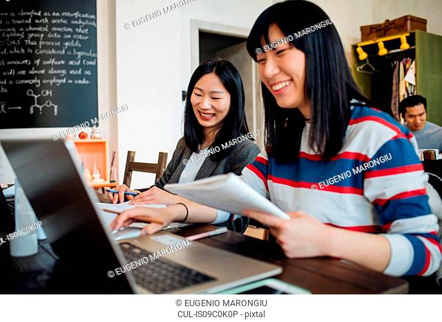 Young businesswomen working on laptop at table