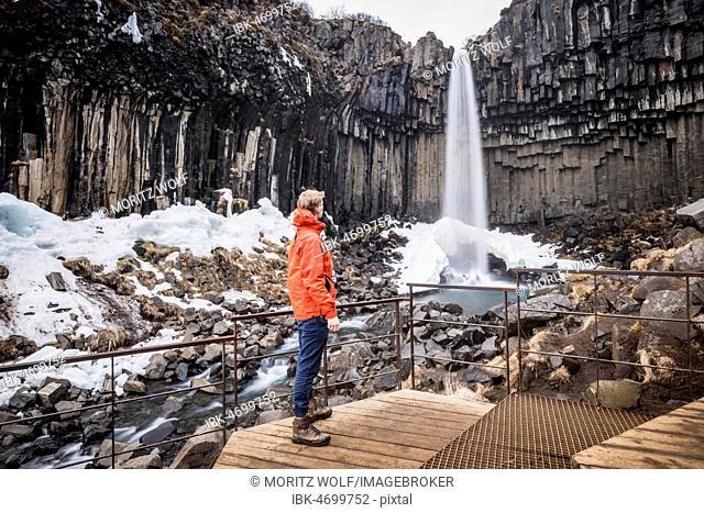 Svartifoss Waterfall, Black Falls, Stórilækur River, basalt columns, Skaftafell National Park, South Iceland, Iceland