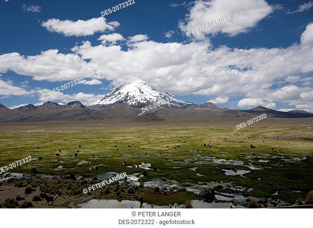 Nevado Sajama, Sajama National Park, Oruro Department, Bolivia