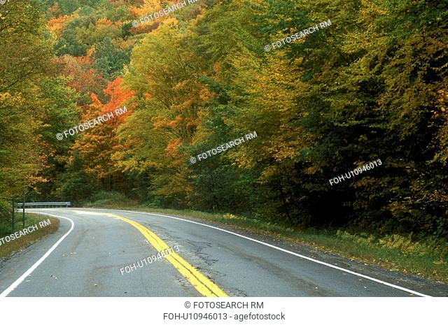 road, fall, Roxbury, VT, Vermont, Route 12A surrounded by colorful foliage in autumn in Roxbury