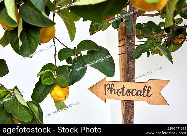 Event signage, Event Celebration, Wedding, Hondarribia, Gipuzkoa, Spain