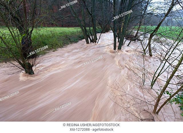 Flash Flood, on hill stream, autumn, Lower Saxony, Germany