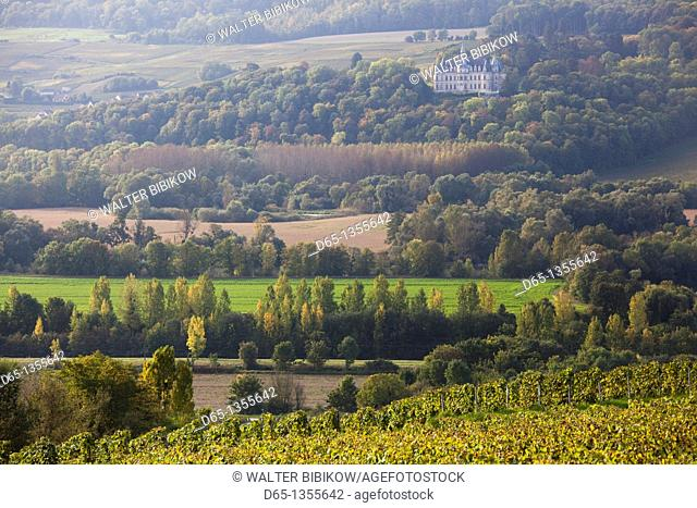 France, Marne, Champagne Region, Fleury la Riviere, vineyard view towards Chateau de Borsault