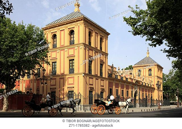 Spain, Andalusia, Seville, Palacio de San Telmo, carriages