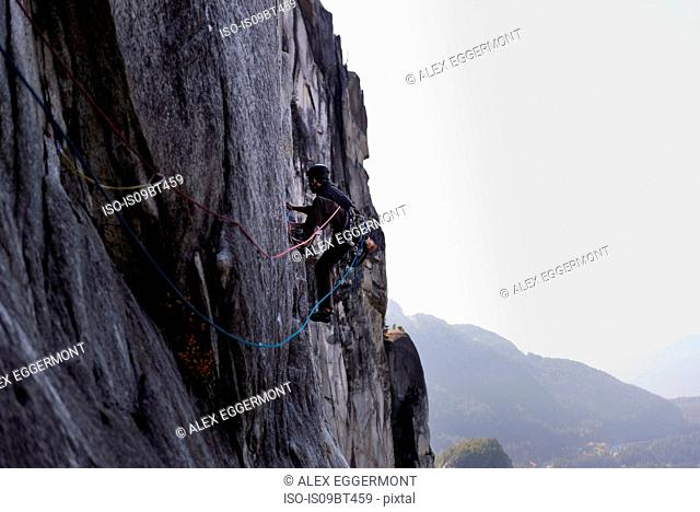 Young male rock climber climbing rock face, elevated view, The Chief, Squamish, British Columbia, Canada