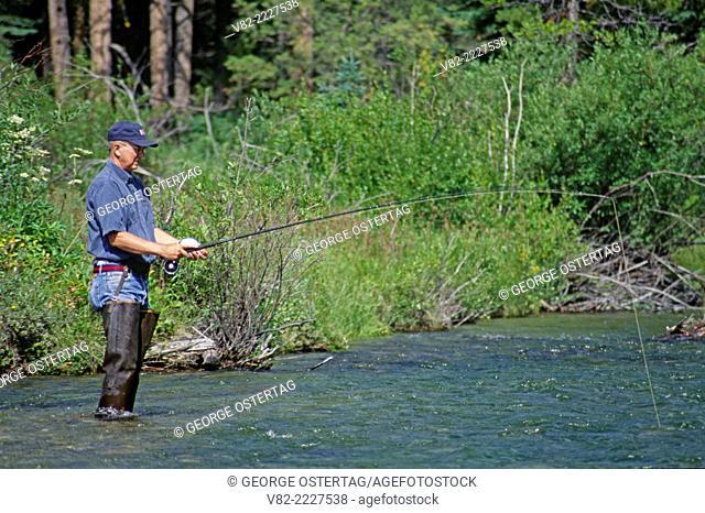 Fishing on East Fork Rock Creek, Beaverhead-Deerlodge National Forest, Montana
