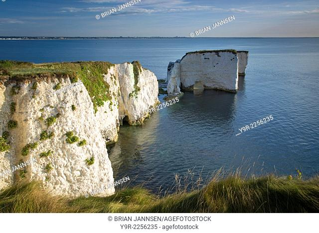 Dawn at the white cliffs and Harry Rocks at Studland, Isle of Purbeck, Jurassic Coast, Dorset, England
