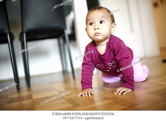 Baby crawling at home