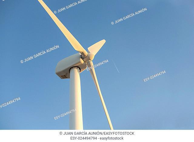 Electric wind turbines farm over blue sky with wake plane, Spain