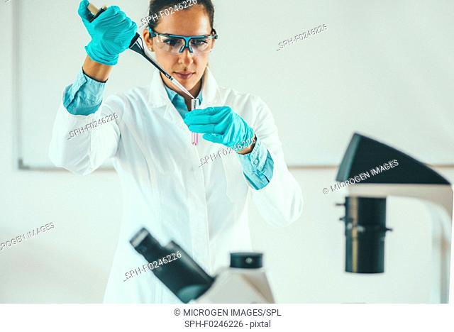 Female scientific researcher working in laboratory