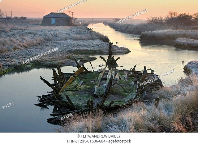 Thames barge wreck, in morning frost at high tide, on saltmarshes, Beaumont Quay, Hamford Water, Walton Backwaters, Essex, England