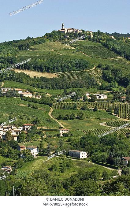 villageand vineyards, pizzofreddo, italy