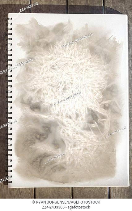 Art school notebook placed on a wooden desk with open pages showcasing a fine art sketch of an old flower with intricate lines and ornate interconnectivity