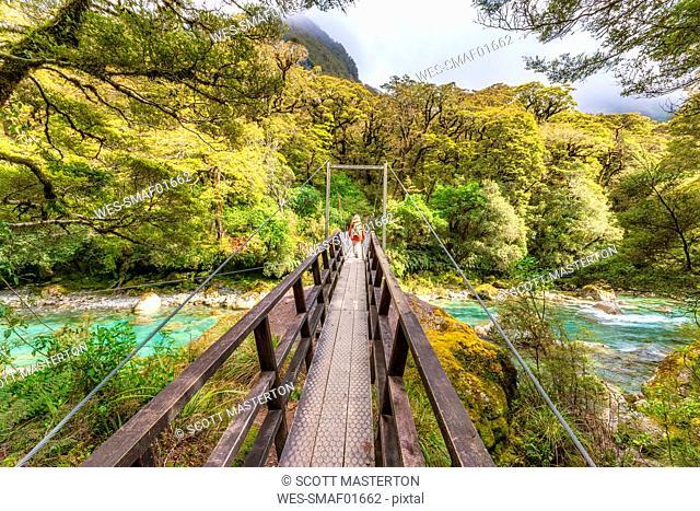 Female hiker walking across swing bridge over river, Fiordland National Park, South Island, New Zealand