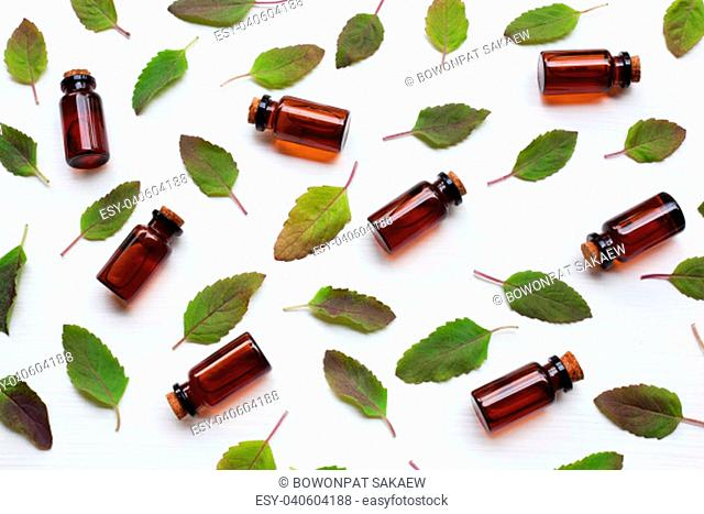 Holy basil essential oil with leaves on white background