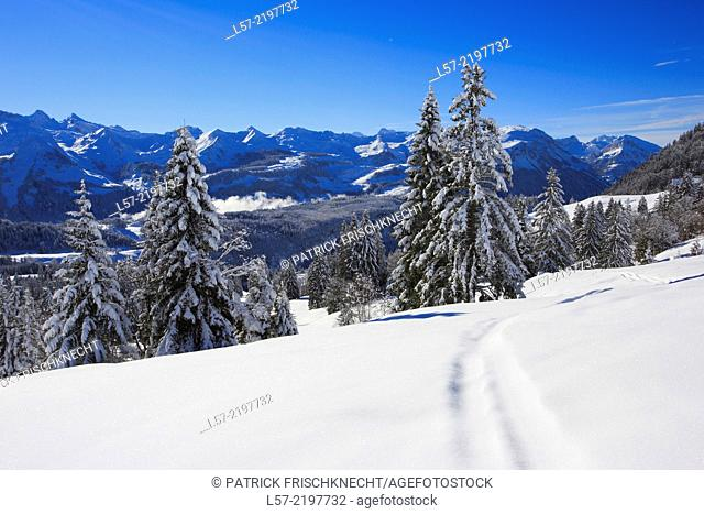 Central Swiss Alps, Siwtzerland