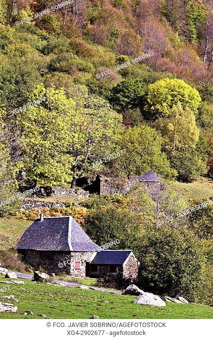 Borda y bosque mixto caducifolio en el Valle de Varradós. Valle de Arán. Lleida. Cataluña. España. Europa