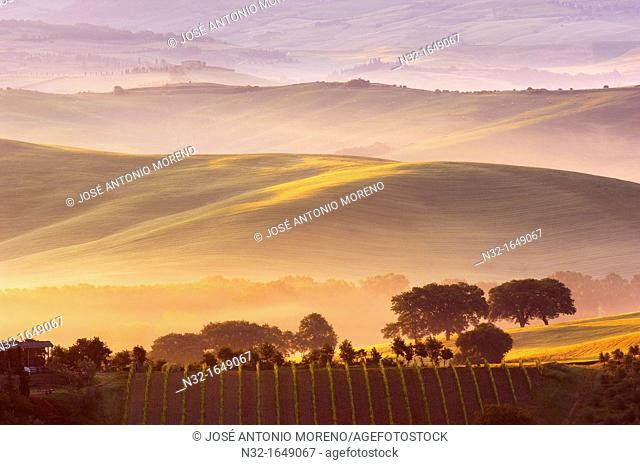 Val d'Orcia at dawn with morning fog, San Quirico d'Orcia, Tuscany landscape, UNESCO World Heritage Site, Siena Province, Tuscany, Italy, Europe