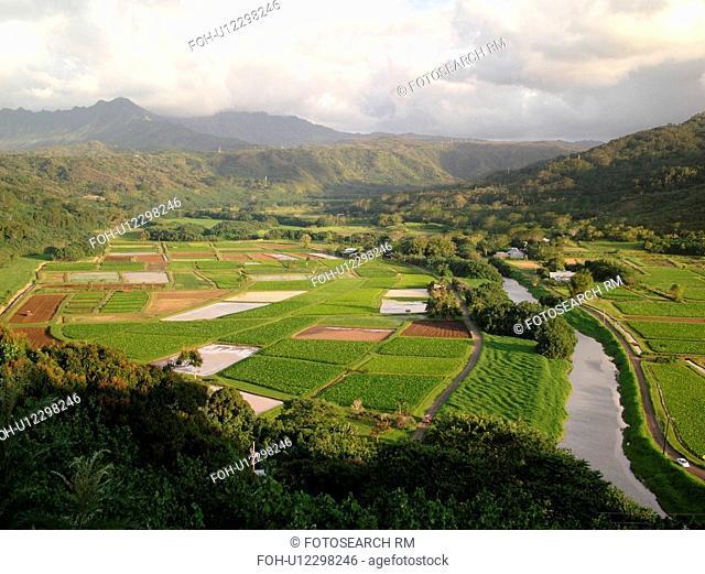 Princeville, Kauai, HI, Hawaii, North Shore, Hanalei Valley, Hanalei National Wildlife Refuge, Taro Fields, Hanalei River