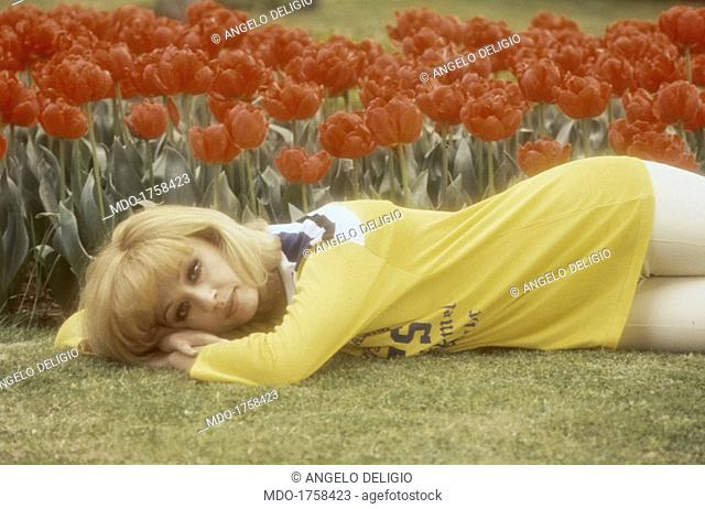Raffaella Carrà in a poppy field. Italian showgirl Raffaella Carrà (Raffaella Maria Roberta Pelloni) lying in a poppy field. 1979
