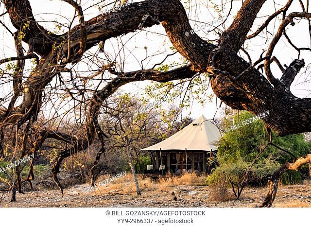 Tent Exterior at Onguma Tented Camp, Onguma Game Reserve, Namibia, Africa