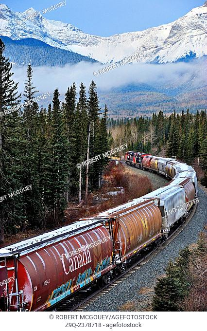 A Canadian National freight train traveling west toward the snow-capped rocky mountains of Alberta Canada