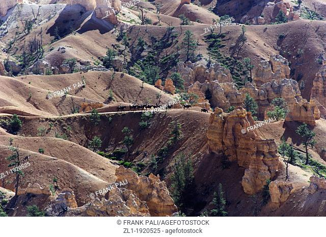 United States of America, Utah, Bryce Canyon National Park, Horse Trekking in Bryce Amphitheatre