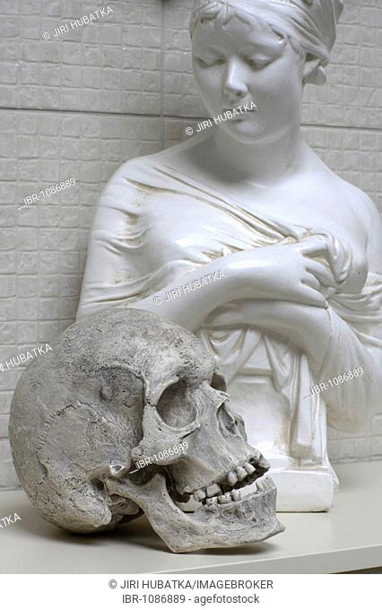 Statue and skull