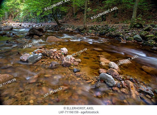 River Ilse, Ilse Valley, Ilsenburg, Harz District, Harz National Park, Saxony-Anhalt, Germany, Europe
