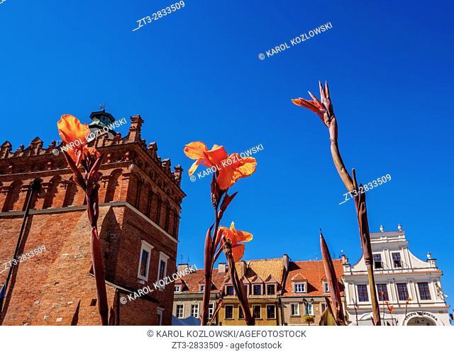 Poland, Swietokrzyskie Voivodeship, Sandomierz, Main Market Square and Town Hall