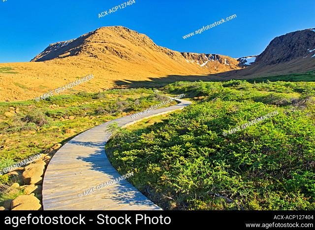Boardwalk on trail at the Tablelands at sunset. Earth's mantle exposed. Gros Morne National Park Newfoundland & Labrador Canada