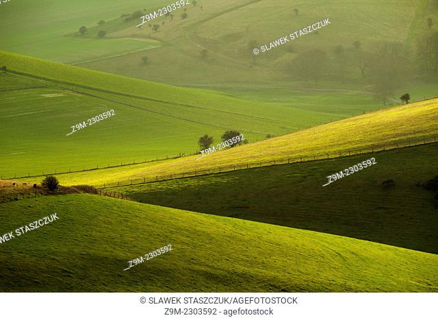 Winter afternoon in the South Downs National Park near Lewes, East Sussex, England