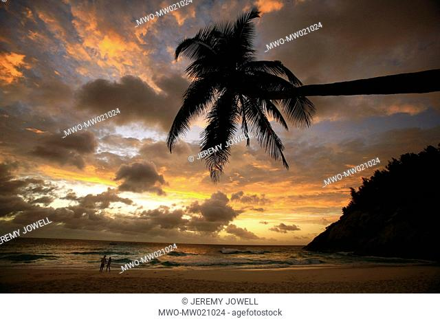North Island, sunset and palm trees and tropical paradise, Seychelles 06-20-2006