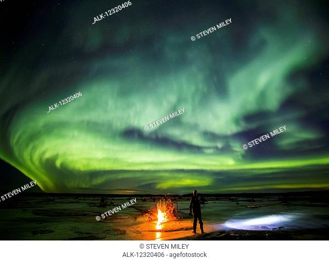 Man stands next to a campfire while northern lights dance overhead, Delta River, Delta Junction, Interior Alaska, USA