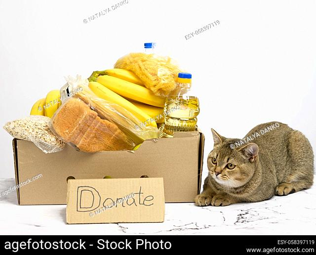 cardboard box with various products, fruits, pasta, sunflower oil in a plastic bottle and preservation. Donation concept